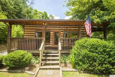 Pigeon Forge Single Family Home For Sale: 4428 Grindstone Ridge Rd