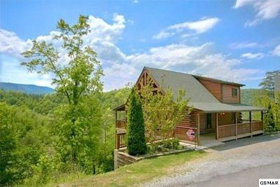 Pigeon Forge Single Family Home For Sale: 4444 New Pioneer Trl