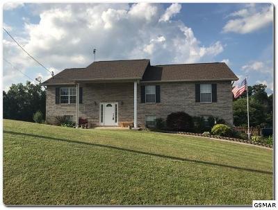 Dandridge Single Family Home For Sale: 515 Keene Circle