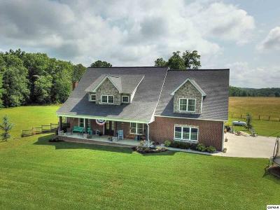 Dandridge Single Family Home For Sale: 3068 Bee Carter Road