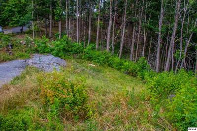 Sevier County Residential Lots & Land For Sale: 601 Deer Path Ln