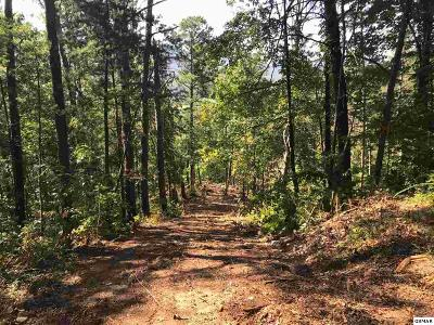 Sevier County Residential Lots & Land For Sale: Lot Lot Lot 2b-1 Wears Overlook Way