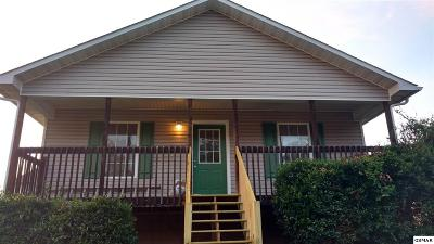 Sevierville Single Family Home For Sale: 2509 Grotto