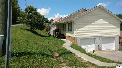 Sevierville Single Family Home For Sale: 2303 Quartz