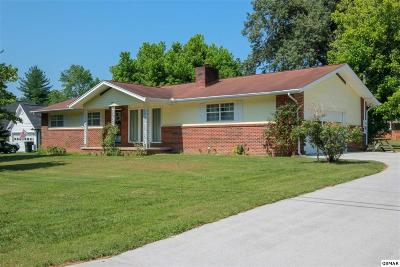 Sevierville Single Family Home For Sale: 316 Poplar St