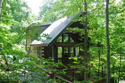 Gatlinburg Single Family Home For Sale: 733 Yona Trail Way
