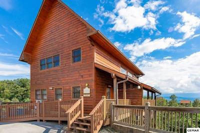 Sevierville Single Family Home For Sale: 2233 Lone Eagle Dr