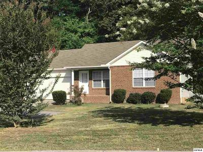 Sevierville Single Family Home For Sale: 427 Hideaway Ridge Cir