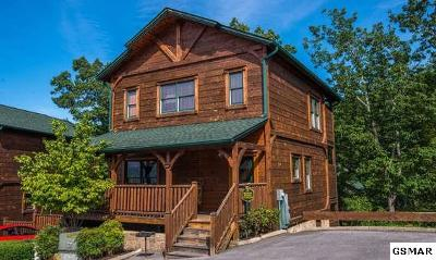 Gatlinburg Single Family Home For Sale: 830 Great Smoky Way