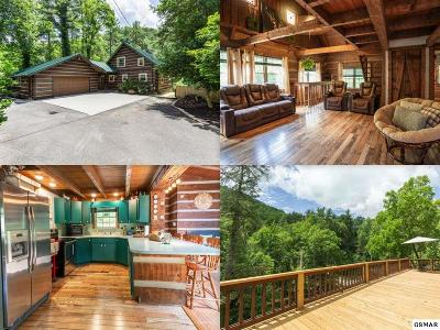 Sevierville Single Family Home For Sale: 2235 Wears Valley Road