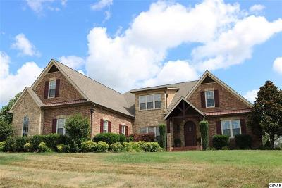 Sevierville Single Family Home For Sale: 1302 Rippling Water Cir