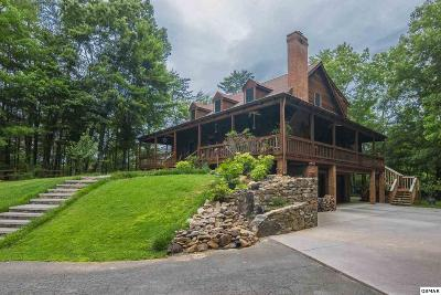 Sevierville Single Family Home For Sale: 2131 Castle Rise