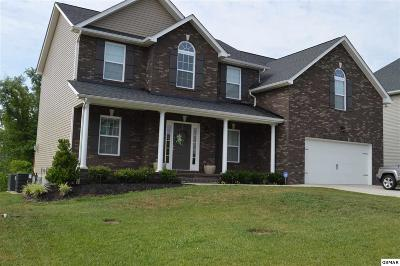 Sevierville Single Family Home For Sale: 2660 Southwinds Cr
