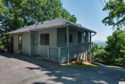 Gatlinburg Single Family Home For Sale: 1680 Zurich Rd