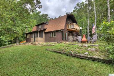Sevierville Single Family Home For Sale: 2110 Bluff Mountain Rd