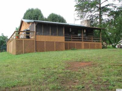 Sevierville Single Family Home For Sale: 1424 East Park Ln.