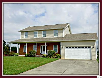 Dandridge Single Family Home For Sale: 209 Vista View Ct.