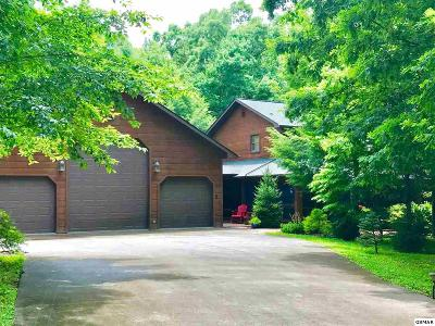 Sevierville Single Family Home For Sale: 3665 Boxwood Lane
