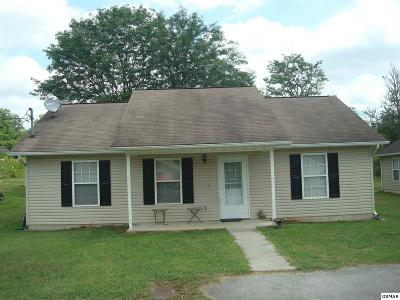 Sevierville Single Family Home For Sale: 160 Red Bud Ln