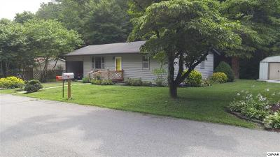 Pigeon Forge Single Family Home For Sale: 515 Cole Drive