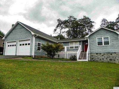 Pigeon Forge Single Family Home For Sale: 3619 Singing Pines Road