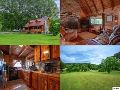 Kodak Single Family Home For Sale: 3155 Bryan Road