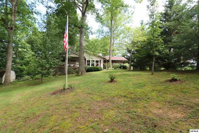 Sevierville Single Family Home For Sale: 441 Kimberly Heights Rd