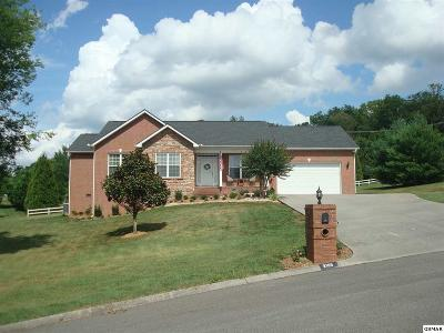 Sevierville Single Family Home For Sale: 2103 Bryson Ct