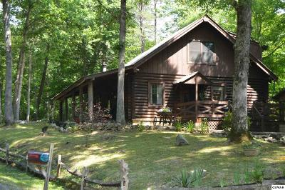 Sevierville Single Family Home For Sale: 3055 John Boy Trail