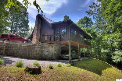 Sevierville Single Family Home For Sale: 4119 Mountain Rest Way