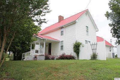Sevier County Single Family Home For Sale: 2664 E Walnut Grove Rd