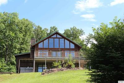 Sevierville Multi Family Home For Sale: 1037 Mountain Scenic Way