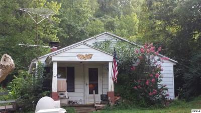 Sevier County Single Family Home For Sale: 542 Lane Hollow Rd