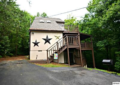 Gatlinburg Single Family Home For Sale: 1803 Luzerne Drive