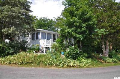 Sevierville Single Family Home For Sale: 1578 Parrotts Chapel Rd