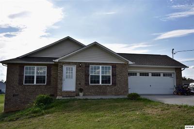 Dandridge Single Family Home For Sale: 618 Privet Dr