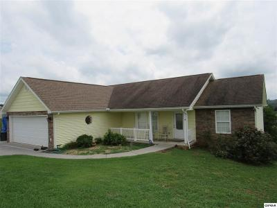 Sevier County Single Family Home For Sale: 729 Tuckahoe View Trail