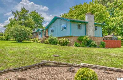 Sevierville Single Family Home For Sale: 310 Hollywood Cir