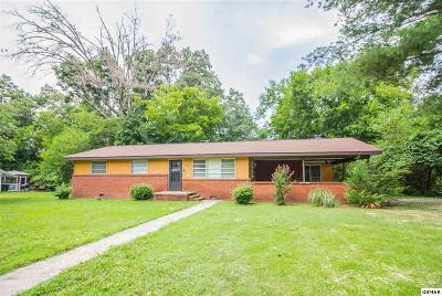 Sevier County Single Family Home For Sale: 1429 Cherokee Cir
