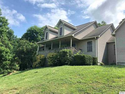 Sevier County Single Family Home For Sale: 3110 Nevils