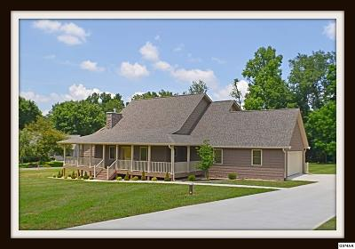 Sevierville Single Family Home For Sale: 3544 Deer Field Cir