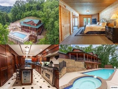 Sevierville Single Family Home For Sale: 159 Bob Hollow Road