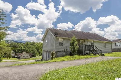 Sevierville Single Family Home For Sale: 1304 Deer Meadows Rd
