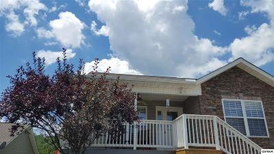 Pigeon Forge Single Family Home For Sale: 2508 Brookwood Dr