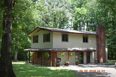 Sevierville Single Family Home For Sale: 1333 Millwood Drive
