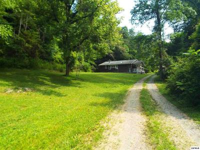 Sevierville Single Family Home For Sale: 4139 Pearl Valley Road