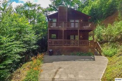 Sevierville Single Family Home For Sale: 1616 Pioneer Trl