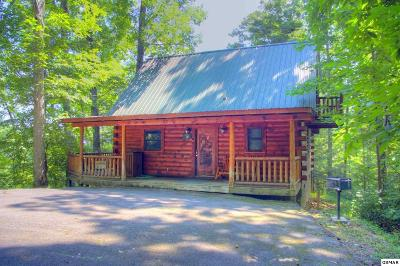 Gatlinburg Single Family Home For Sale: 4219 Alyssa Way