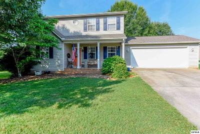 Maryville Single Family Home For Sale: 413 Hiddenbrook Ln