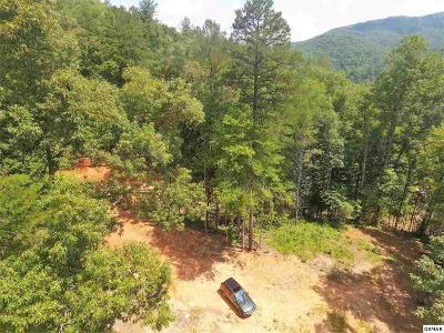 Residential Lots & Land For Sale: 4277 Pittman Center Road